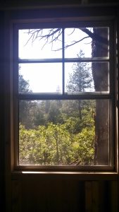 The view from what will be our bathroom.